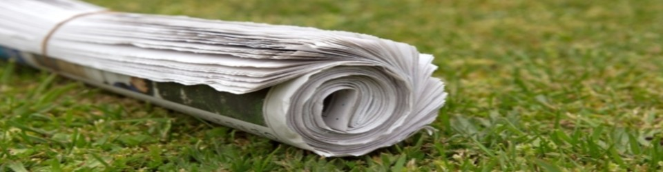 newspaper_on_grass